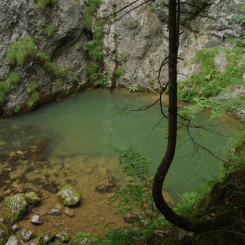 Izbucul Tăuzului - peisaj pitoresc un lac din care izvorăște râu